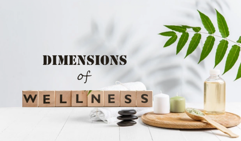Dimensions of Wellness: Change your Life, Change your Habits